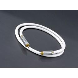 Atohm ZEF Modul RCA : câble RCA