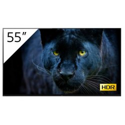"Sony FWD-55A8/T : écran professionnel OLED 4K HDR 55"" avec tuner"